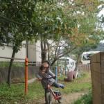 2歳児さん 園庭遊び