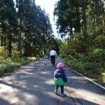 秋晴れです☀今日も八森山へ