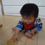 0歳さんの積み木遊び