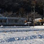 見事な雪景色⛄