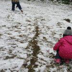 ほんの少しの雪だけど・・・・⛄