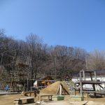 今日もいい天気☀0歳児さんたちの園庭遊び🚙