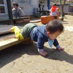 0歳児さん。園庭遊び。いい天気です。